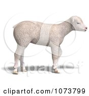 Clipart 3d White Lamb Sheep Jumping 3 Royalty Free CGI Illustration