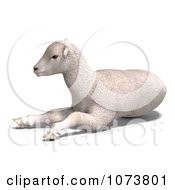 Clipart 3d White Lamb Sheep Resting 1 Royalty Free CGI Illustration