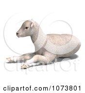 Clipart 3d White Lamb Sheep Resting 1 Royalty Free CGI Illustration