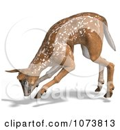 Clipart 3d Baby Yearling Deer Fawn Grazing 1 Royalty Free CGI Illustration