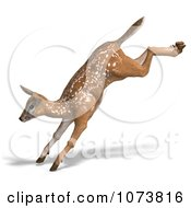 Clipart 3d Baby Yearling Deer Fawn Leaping 1 Royalty Free CGI Illustration