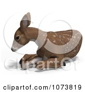 Clipart 3d Baby Yearling Deer Fawn Resting 2 Royalty Free CGI Illustration