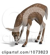 Clipart 3d Baby Yearling Deer Fawn Grazing 3 Royalty Free CGI Illustration