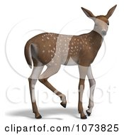 Clipart 3d Baby Yearling Deer Fawn 2 Royalty Free CGI Illustration