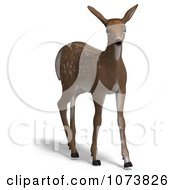 Clipart 3d Baby Yearling Deer Fawn 3 Royalty Free CGI Illustration