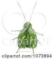 Clipart 3d Green Waterbug Cockroach Insect 1 Royalty Free CGI Illustration by Ralf61