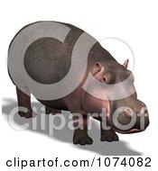 Clipart 3d Wild Hippo 1 Royalty Free CGI Illustration