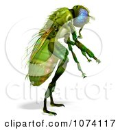 Clipart 3d Green House Fly 2 Royalty Free CGI Illustration
