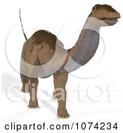 Clipart 3d Prehistoric Apatosaurus Dinosaur 8 Royalty Free CGI Illustration by Ralf61