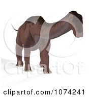 Clipart 3d Prehistoric Apatosaurus Dinosaur 7 Royalty Free CGI Illustration by Ralf61