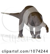 Clipart 3d Prehistoric Apatosaurus Dinosaur 2 Royalty Free CGI Illustration by Ralf61