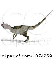 3d Prehistoric Cryolophosaurus Dinosaur 10