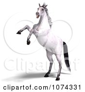 Clipart 3d White Horse Rearing Royalty Free CGI Illustration