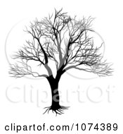 Clipart Silhouetted Black And White Bare Tree Royalty Free Vector Illustration by AtStockIllustration
