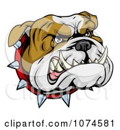 Clipart Aggressive Bulldog Face With A Spiked Collar Royalty Free Vector Illustration by AtStockIllustration