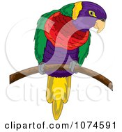 Colorful Parrot On A Branch 1