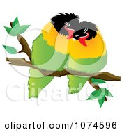 Two Love Birds Perched On A Branch 3