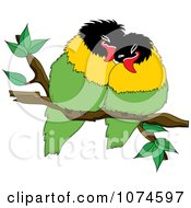 Two Love Birds Perched On A Branch 4