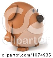 Clipart 3d Chubby Brown Dog Facing Right Royalty Free CGI Illustration