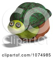 Clipart 3d Content Tortoise In His Shell Royalty Free CGI Illustration by Ralf61