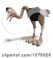 Clipart 3d Wild Ostrich Bird Looking Down Royalty Free CGI Illustration by Ralf61
