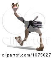 Clipart 3d Wild Ostrich Bird Walking 1 Royalty Free CGI Illustration by Ralf61