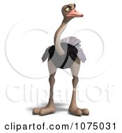 Clipart 3d Mad Wild Ostrich Bird 1 Royalty Free CGI Illustration by Ralf61