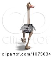 Clipart 3d Wild Ostrich Bird Walking 3 Royalty Free CGI Illustration by Ralf61