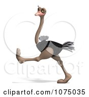 Clipart 3d Wild Ostrich Bird Walking 4 Royalty Free CGI Illustration by Ralf61
