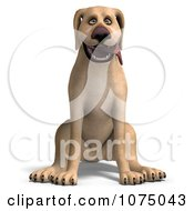 Clipart 3d Happy Yellow Lab Dog Sitting Royalty Free CGI Illustration