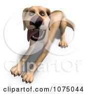 Clipart 3d Yellow Lab Dog Laying 2 Royalty Free CGI Illustration
