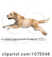 Clipart 3d Yellow Lab Dog Leaping Royalty Free CGI Illustration