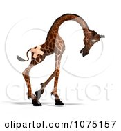 Clipart 3d Accident Prone Giraffe With Bandages Royalty Free CGI Illustration