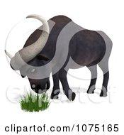 Clipart 3d Water Buffalo Eating Grass Royalty Free CGI Illustration