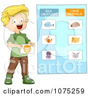 Clipart School Boy Categorizing Sea Creatures And Land Animals Royalty Free Vector Illustration by BNP Design Studio