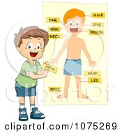 Clipart School Boy Tagging Body Parts On A Chart Royalty Free Vector Illustration