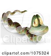 Clipart 3d Cute Snake 2 Royalty Free CGI Illustration