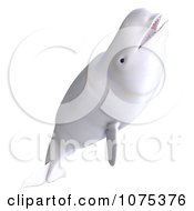Clipart 3d White Female Beluga Whale 4 Royalty Free CGI Illustration