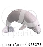 Clipart 3d White Juvenile Beluga Whale 2 Royalty Free CGI Illustration