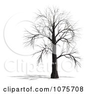 Clipart 3d Creepy Bare Tree 4 Royalty Free CGI Illustration