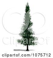 Clipart 3d Conifer Tree Royalty Free CGI Illustration
