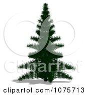 Clipart 3d Fir Tree Royalty Free CGI Illustration