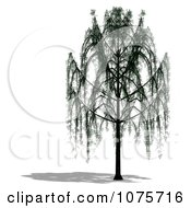 Clipart 3d Willow Tree Royalty Free CGI Illustration by Ralf61
