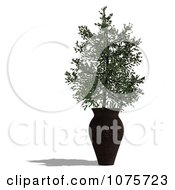 Clipart 3d Potted Tree 3 Royalty Free CGI Illustration