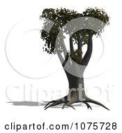 Clipart 3d Cotton Tree Royalty Free CGI Illustration