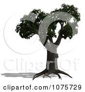 Clipart 3d Maple Tree Royalty Free CGI Illustration