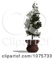 Clipart 3d Potted Tree 1 Royalty Free CGI Illustration