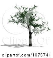 Clipart 3d Cherry Tree 1 Royalty Free CGI Illustration by Ralf61