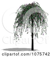 Clipart 3d Cherry Tree 2 Royalty Free CGI Illustration by Ralf61