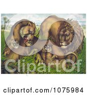 Family Of Lions In Grass Royalty Free Historical Clip Art